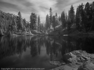 Mowich Lake - Infrared B&W