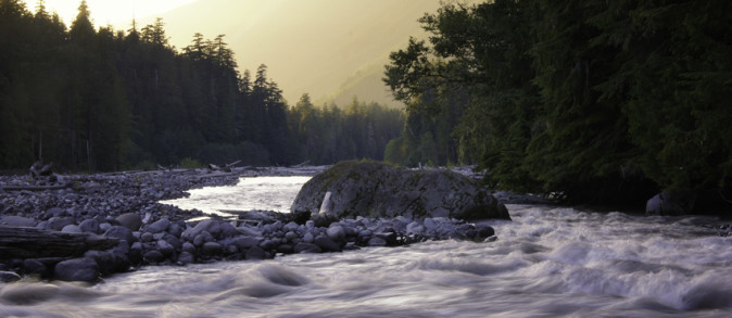 Sunset at Carbon River near Chenuis Falls, Mount Rainier National Park