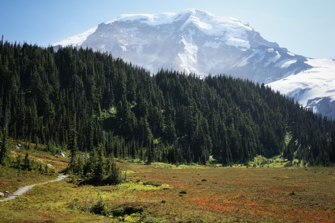 Moraine Park on the Wonderland Trail, Mount Rainier National Park