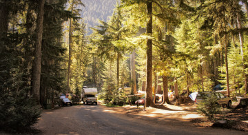 The White River Campground at Mount Rainier