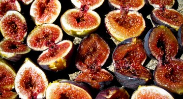 Endless figs for dehydrating